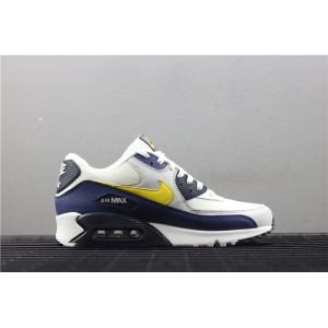 Men's Nike Air Max 90 Essential AJ1285 101 white purple